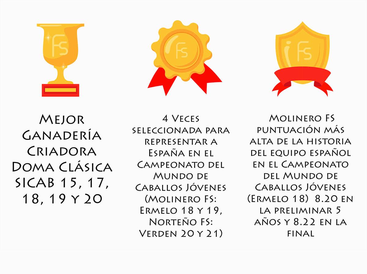 4 veces seleccionada para representar a España en el Campeonato del Mundo de Caballos Jóvenes